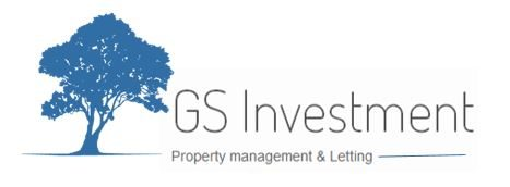GS investment